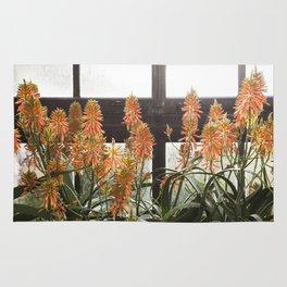 Torch Aloe Rug