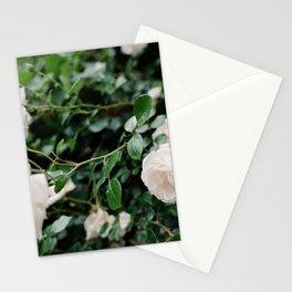 film + flowers + brooklyn Stationery Cards