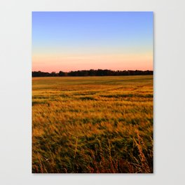 Sunset over the fields Canvas Print