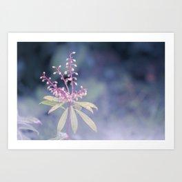 Dreamy Winter Haze, Pink Macro Plant - Nature Photography Art Print