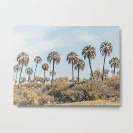 El Palmar National Park Palm Trees | Entre Rios, Argentina | Travel Landscape Photography Metal Print
