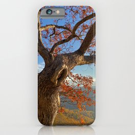 Keeping Watch Over the Valley iPhone Case