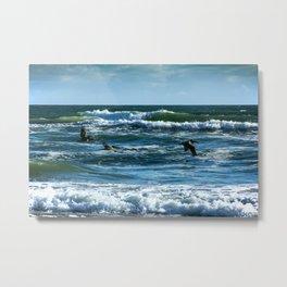 Pelicans Surf Top Flying Metal Print