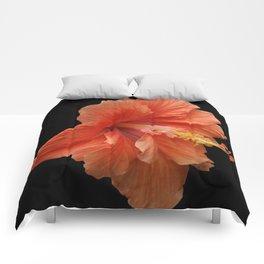 Double Orange Hibiscus DPG160419 Comforters