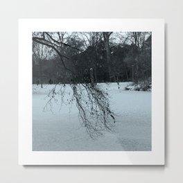 Winter nature Metal Print