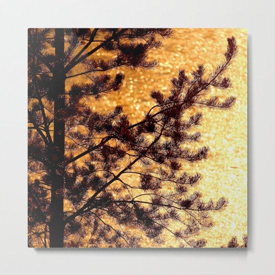 Pine Silhouette at Sunset Metal Print