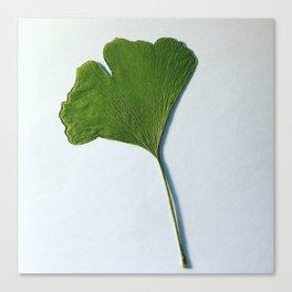 Pressed Leaf Canvas Print