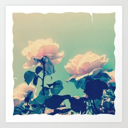 Soft Baby Pink Roses with Mint Blue Sky Backgroud Art Print