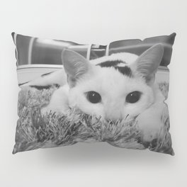 kitty ready to pounce Pillow Sham
