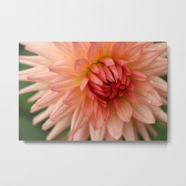 Peachy Star Metal Print