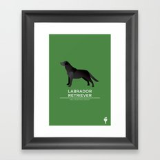 Black Labrador Retriever Framed Art Print