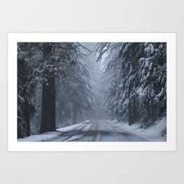 Winter along County Roads Art Print