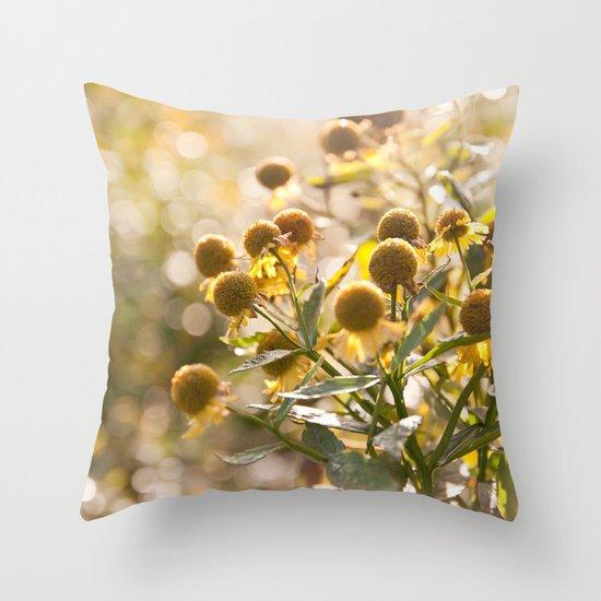 Flowers in Mt. Rogers, Virginia Throw Pillow