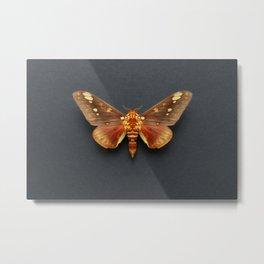 Royal Moth Metal Print