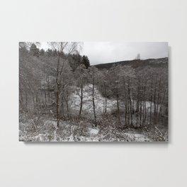 Snow in Hurtgen Forest Metal Print