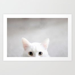 Ponyboy the Cat Art Print