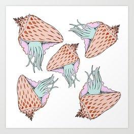 Cuttle Conch Art Print