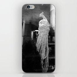 Peacock Window Display iPhone Skin