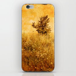 Old Picture of Landscape iPhone Skin