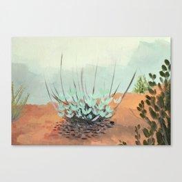 White Sage Canvas Print