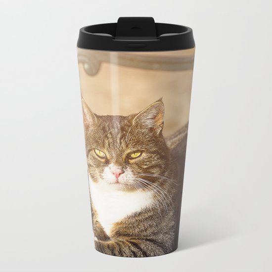 Cute cat relaxing in the sun on old bench Metal Travel Mug
