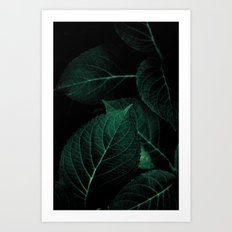 Dark Leaves I Art Print