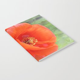 Poppies (cheerful) Notebook