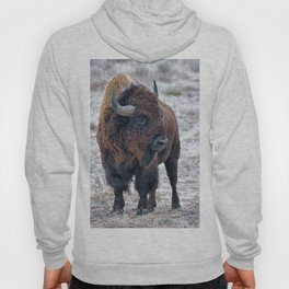 In The Presence Of Bison #society6 #decor #bison by Lena Owens @OLena Art Hoody