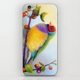 Gouldian finch realistic painting iPhone Skin