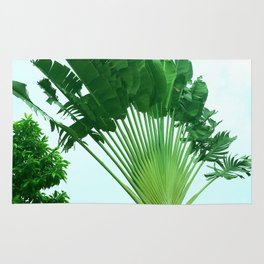Green Haven Rug