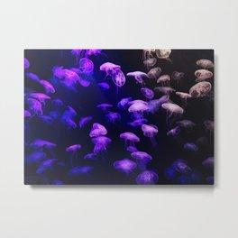 Jellyfish - purple and pink Metal Print