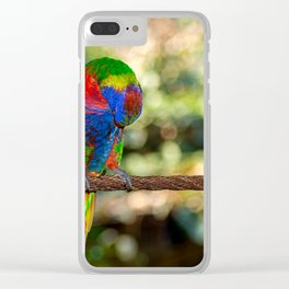 The honey parrot Clear iPhone Case