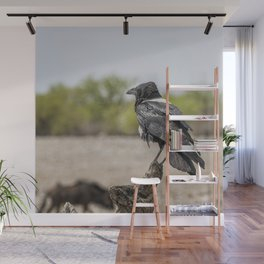 Pied Crow Wall Mural