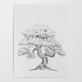 """""""The Little Bonsai"""" by Mauri Poster"""