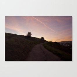 Pathways Canvas Print