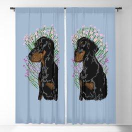 Dobermann pincer calm - Bluegrey Blackout Curtain
