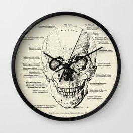 Vintage Anatomy Skull  Wall Clock