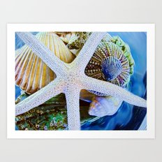 All the Colors of the Sea Art Print