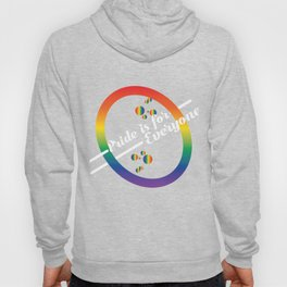 Gay Lesbian LGBT Bisexual Homosexual pansexual trans queer gender rainbow Hoody