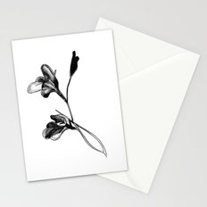 Gladiolus Stationery Cards