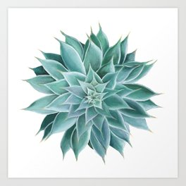 Succulent Acrylic Painting Art Print