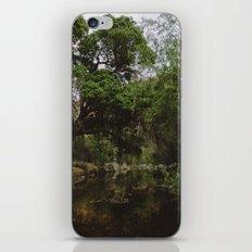 Sabino Canyon Creek iPhone & iPod Skin