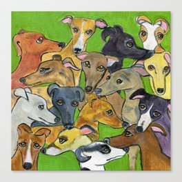 Greyhounds on green Canvas Print