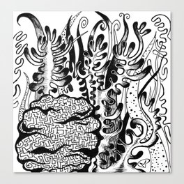 coral corral Canvas Print
