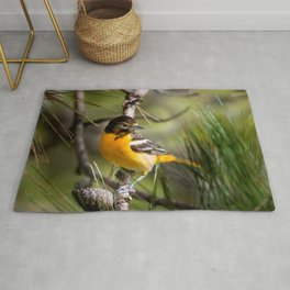 Oriole and Pine cone Rug