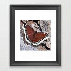 Cloak of Mourning Butterfly Framed Art Print