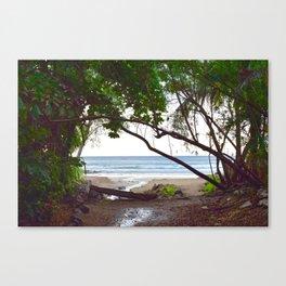 Playa Tamarindo Canvas Print