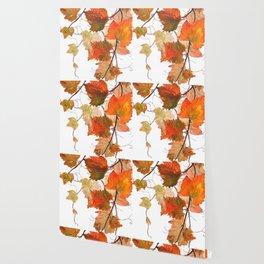 orange grapevine 2 Wallpaper