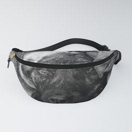Who, who, who?  Who let the dogs out? humorous black and white photography - photographs Fanny Pack