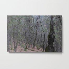Northern Cali Woods Metal Print
